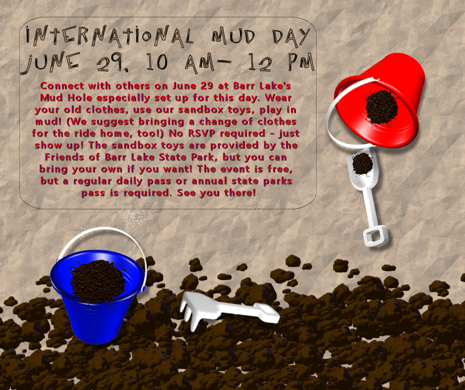 International Mud Day