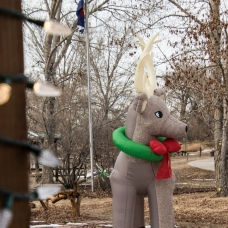 Inflatable Reindeer at the Nature Center