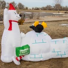 A Polar Inflatable