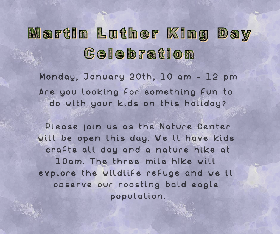 Martin Luther King Day Celebration